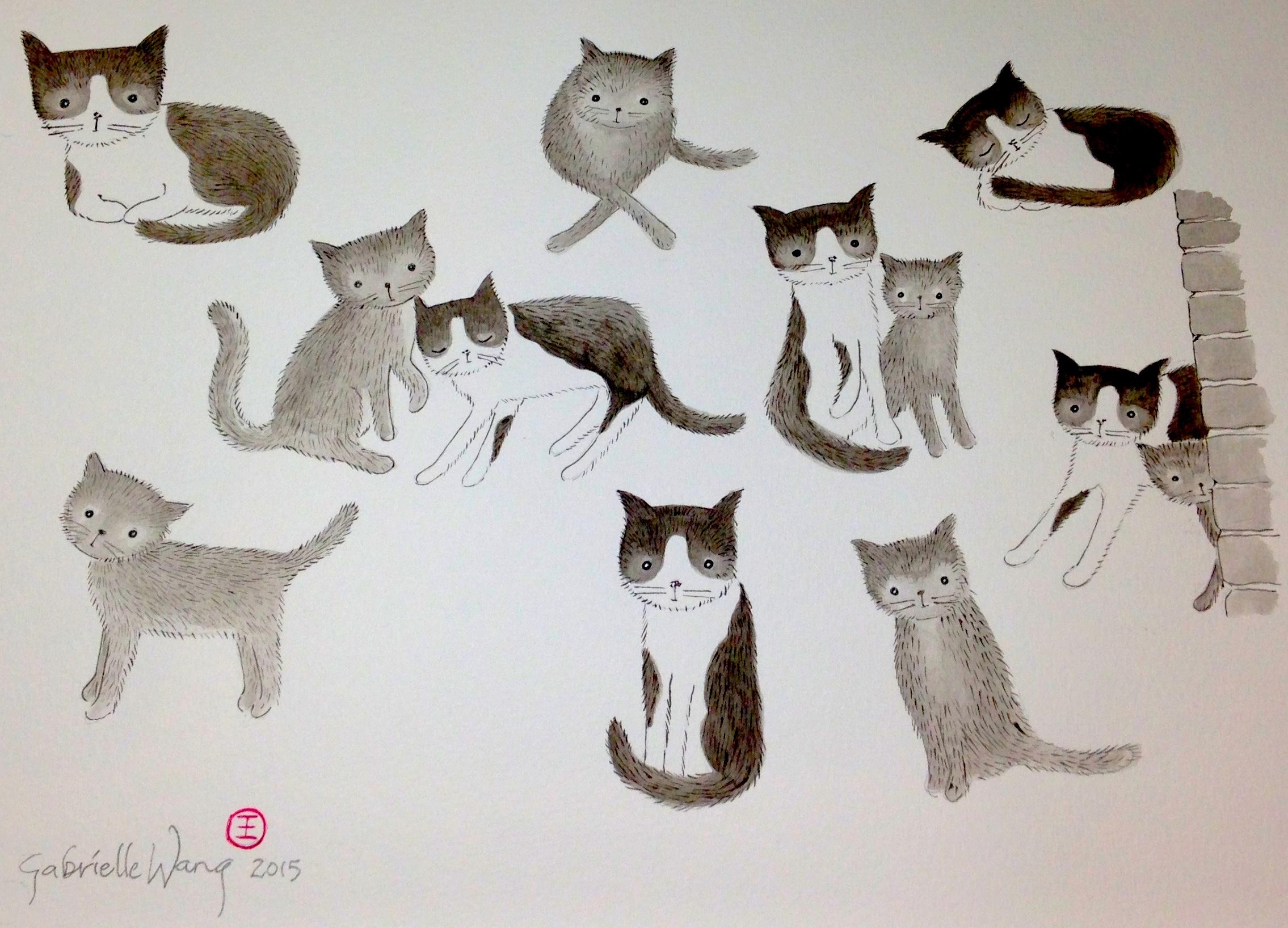 cats copy
